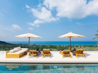 Villa White Tiger: 16m Infinity Swimming Pool - Koh Samui vacation rentals