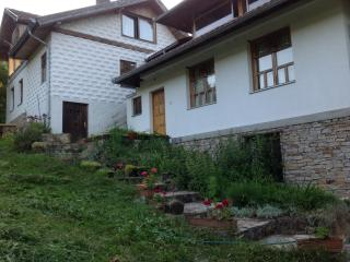 Beautifull Summer House for resting and fun - Gorazde vacation rentals