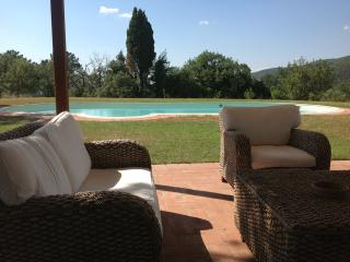 luxury villa with beatiful swimming pool in greve - Greve in Chianti vacation rentals