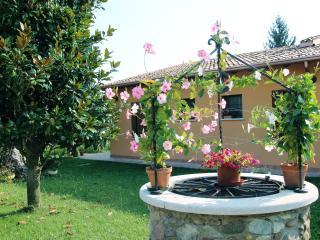 Agriturismo Nuvolino Camera Camelia - Monzambano vacation rentals
