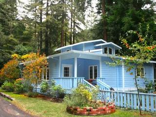 """Blue Cherry"" Perfect  retreat!Close to town & River/Wineries! - Guerneville vacation rentals"