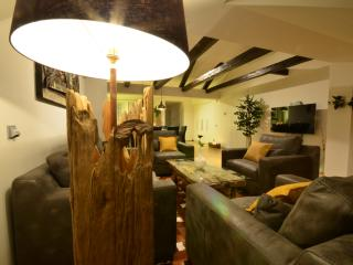 Attic Vitezna II - Iconic four bedroom apartment - Prague vacation rentals