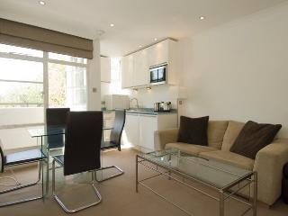 Elegant apartment in Chelsea with balcony - London vacation rentals