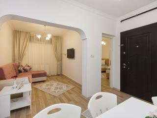 2 BDR FLAT NEAR OLD TOWN - Istanbul vacation rentals
