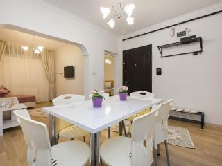 COZY 79m2 FLAT WITH PRIVATE GARDEN - Istanbul vacation rentals
