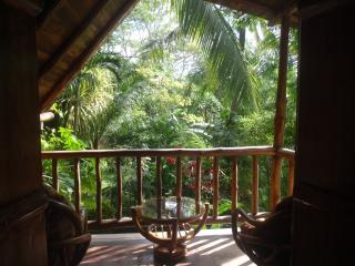 Pachamama Tropical Garden Lodge - Mal Pais vacation rentals