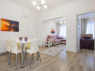 2 BDR FLAT IN SAFE AREA - Istanbul vacation rentals