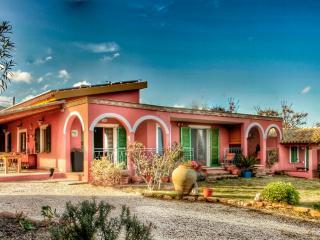 Erika apartment, in villa with garden,sea view. - Santa Margherita di Pula vacation rentals