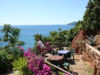 rio albano-residenza-vista spettacolare all'elba - Rio Marina vacation rentals