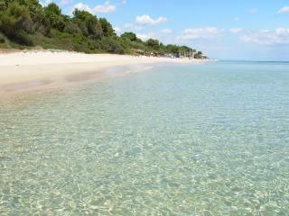 Villa in the pine forest by the sea in Sardinia - Santa Margherita di Pula vacation rentals