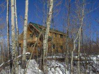 Perfect Cabin with Deck and Internet Access - Mesa (Mesa County) vacation rentals