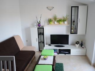 Apartments Nika--Zadar--Croatia - Zadar vacation rentals