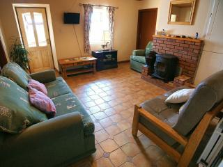 Beautiful Cottage with Internet Access and Kettle - Cashel vacation rentals