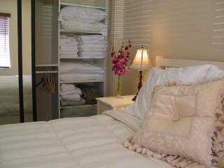Elegant 1 Bedroom Rental - Pacific Beach vacation rentals