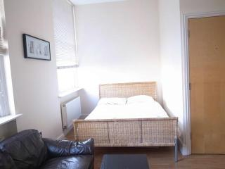 Large Studio Marble Arch sleeps 3 people - London vacation rentals