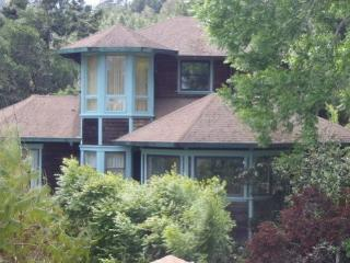 The Tree House - Point Reyes Station vacation rentals