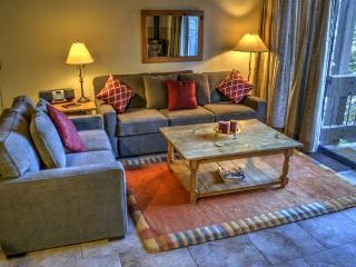 Northstar Village one bdrm loft condo, slps 6 - Truckee vacation rentals