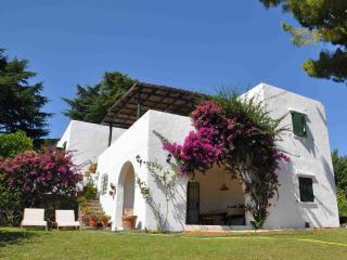 Casa Circeo, villa al mare con grande giardino - San Felice Circeo vacation rentals
