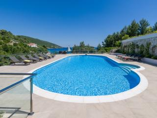 Luxury Villa Zaglav - Blato vacation rentals