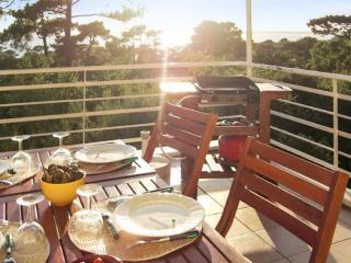 Ocean-view villa with terrace at Le Pyla - Pyla-sur-Mer vacation rentals
