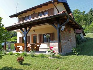 Countryside house EMA Tuheljske Toplice - Tuhelj vacation rentals