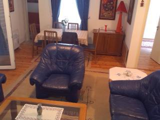 House for rent in Skopje-MAcedonia - Skopje vacation rentals