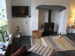 Romantic Cottage with Internet Access and Television - Grasmere vacation rentals