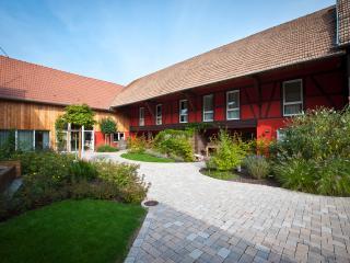 LE SECHOIR- grand duplex luxe   6 personnes  4**** - Bas-Rhin vacation rentals