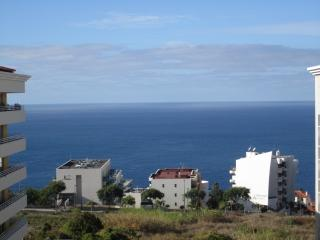 Green Park III - Swimming Pool & Wonderfull Views - Sao Martinho vacation rentals