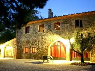 La Limonaia at Villa Ceppeto - Monte San Savino vacation rentals