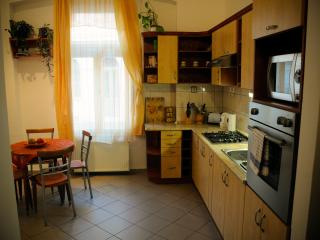 lovely apartment in the downtown - Szeged vacation rentals