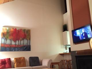 ProJo Ski Haus - Twin Mountain vacation rentals
