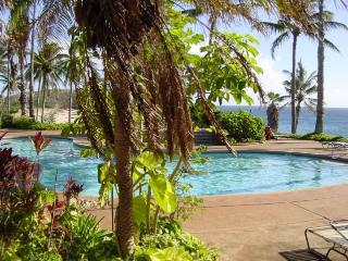 #2185 (1 of 5 Beach Front Units) @ Kepuhi Beach - Maunaloa vacation rentals