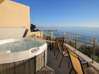 Million Dollar Ocean Views - Aptos vacation rentals
