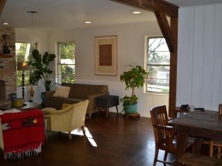 Austin vintage original, walk to South Lamar! - Austin vacation rentals