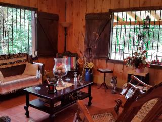 Charming House with Dishwasher and Blender - San Rafael vacation rentals