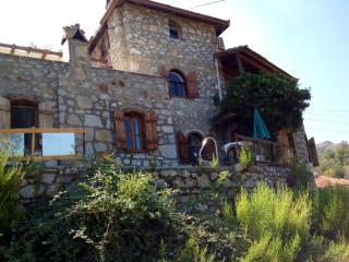Vllla Manzara-Stone Villa Top Floor - Selimiye vacation rentals