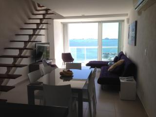 beutiful ocean view penthouse in amara cancun - Playa Mujeres vacation rentals