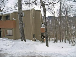 Village of Loon 63WL - Professionally Managed by Loon Reservation Service - Lincoln vacation rentals