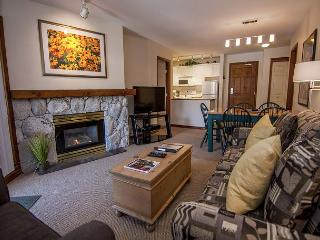 Aspens #439, Top Floor 2 Bdrm, Ski in Ski out with BBQ & AC - Whistler vacation rentals