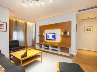 LARGE 2BR-2BA-90 M2-LIFT-CLEANING! - Istanbul vacation rentals
