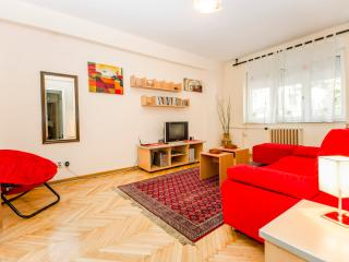 Comfortable Condo with Internet Access and A/C - Belgrade vacation rentals