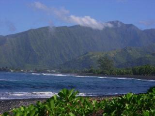 Tahiti Surf Spot Paradise Temoe - Teahupoo vacation rentals