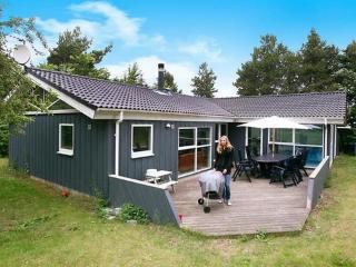 Høve Strand ~ RA15599 - Zealand vacation rentals