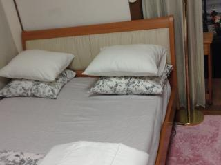 1 bedroom Apartment with Internet Access in Minato - Minato vacation rentals