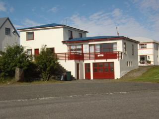 Comfortable Villa with Internet Access and Water Views - Höfn vacation rentals