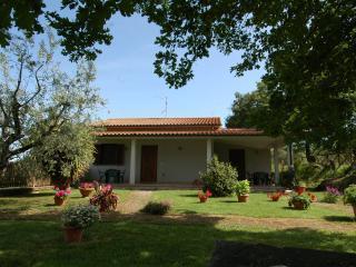 Agriturismo San Vincenzo Camera 03 - Sovana vacation rentals