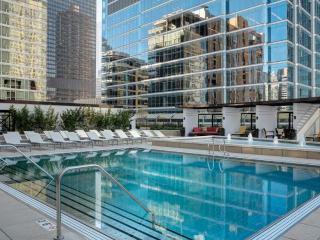 Studio in luxury building in heart of Chicago - Chicago vacation rentals
