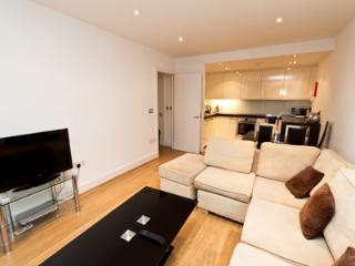Stunning One Bed Apartment in heart of City - London vacation rentals