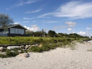 Tørresø ~ RA16334 - Otterup vacation rentals
